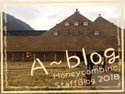 A_blog